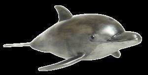Bottlenose Dolphin (object)