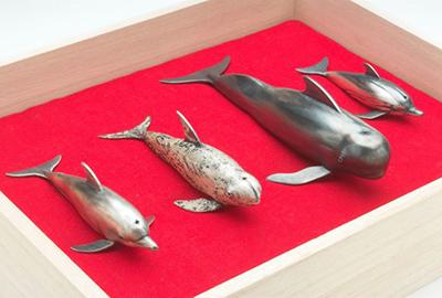 Dolphin Sushi Anyone? (object)
