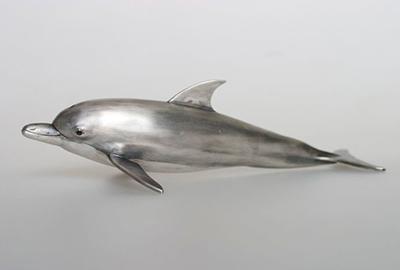 Bottlenose Dolphin (object) detail