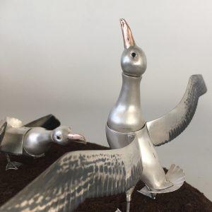 Albatross Dance